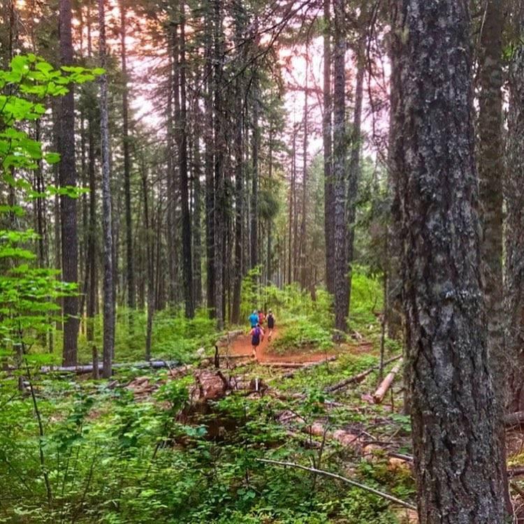 Post Canyon 50k &  Half Marathon/Field Trips