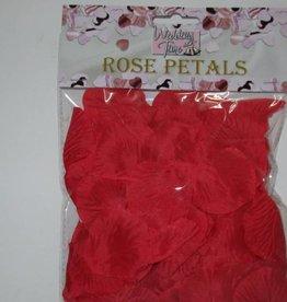 Loose Rose Petals