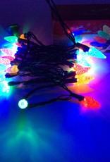 30 lights C6 LED Indoor Light Set - Multicolor End-to-End