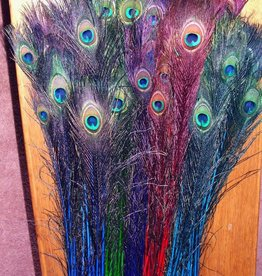 """Peacock Feather Assorted Coloured Stems 25-30"""""""