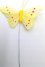 Butterfly with Dots