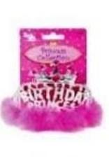 Birthday Princess Tiara With Boa Silver 4.5X5.5 Inches
