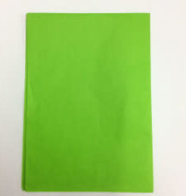 Kite Paper Singles (1pc) Apple Green