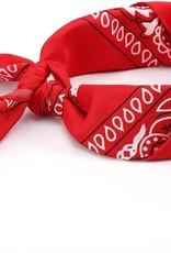 Bandana Paisley Patterned Red