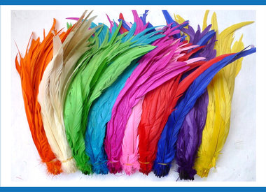 Coque Feathers
