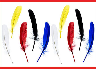 Nagorie (Goose) Feathers