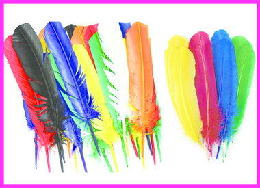 Turkey Quill Feathers