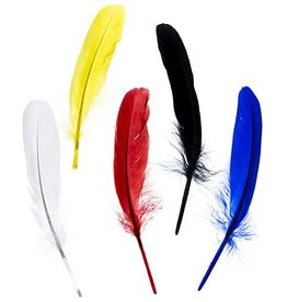Goose Feathers 5-6 Inches Assorted Colours (10 Pieces)
