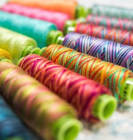 Sue Spargo Sue Spargo Eleganza #5  Variegated  Thread