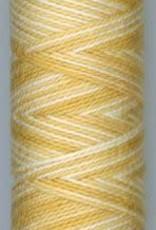 Sue Spargo Sue Spargo Eleganza #8 Varigated Thread
