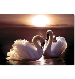 TOMAX TOM30-080 LOVING SWANS 300 PCS PUZZLE