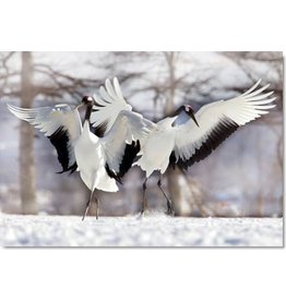 TOMAX TOM30-079 TWO JAPANESE CRANES 300 PCS PUZZLE