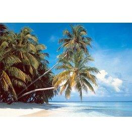 TOMAX TOM200-017 MALDIVE ISLAND 2000 PCS PUZZLE