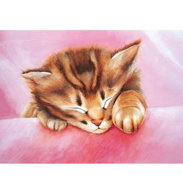 TOMAX TOM50-016 DREAM OF KITTY 500 PCS PUZZLE