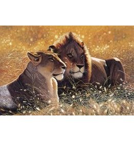 TOMAX TOM100-121 LIONS IN THE SUN 1000 PCS PUZZLE