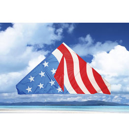 """SKYDOG KITES SKK11164 55"""" USA DELTA KITE"""