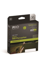 RIO Products InTouch RIO Perception