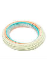 RIO Products Elite Flats Pro: 15' Clear Tip