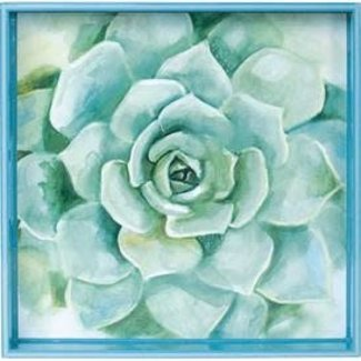 "RockFlowerPaper 15"" Square Tray - Green Succulent"