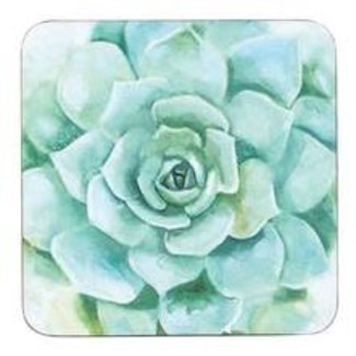 RockFlowerPaper Coasters Set of 4 - Green Succulent