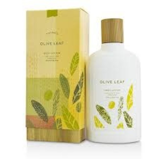 Thymes Thymes Body Lotion -  Olive Leaf