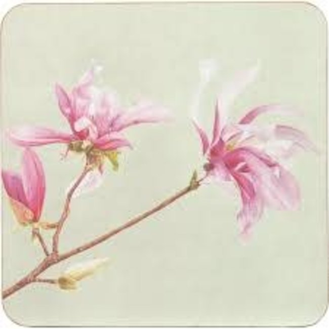 RockFlowerPaper Rock Flower Paper Cork Backed Placemat Set/4- Magnolia
