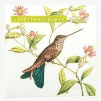 Rockpaperflower Rock Flower Paper Cocktail Napkins - Hummingbird