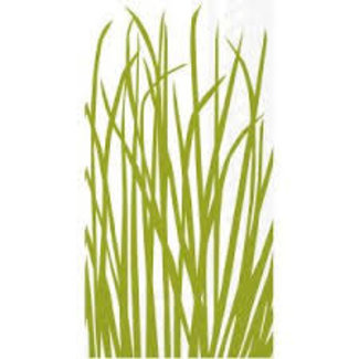 Boston International Hostess Napkin- Seagrass