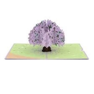 LovePOP Love Pop Greeting Card- Jacaranda Tree (light purple)
