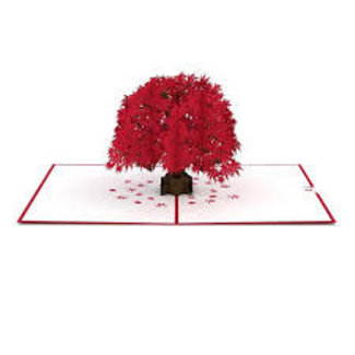 LovePOP Love Pop Greeting Card- Japanese Maple (Red Tree)