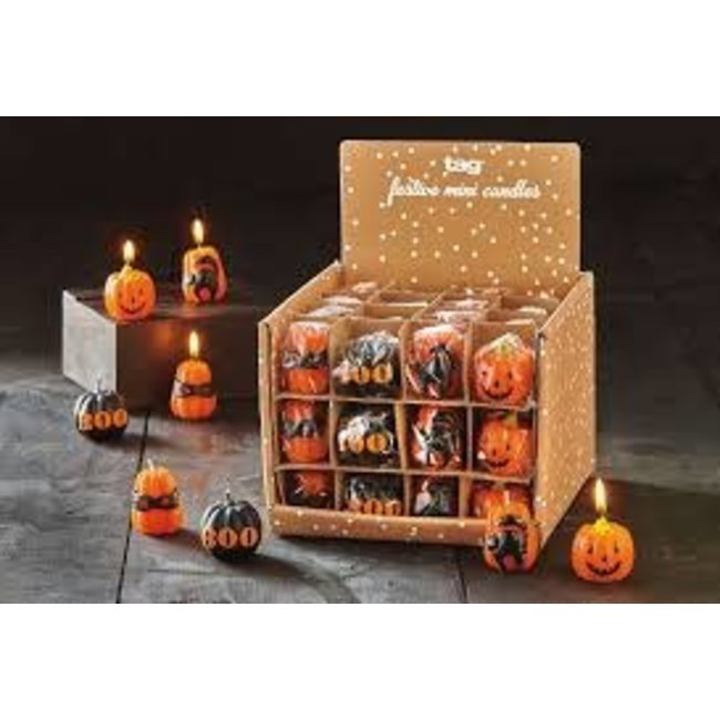 TAG Candle- Pumpkin Patch Assorted