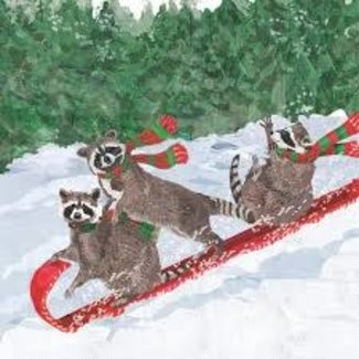PPD PPD Cocktail Napkins - Tobogganing Racoons