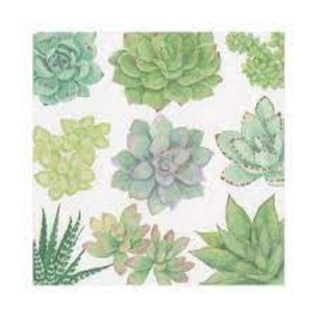 Caspari Caspari Luncheon Napkins - Succulents