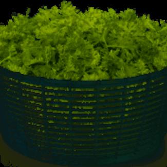 OXO Oxo Little Salad Spinner