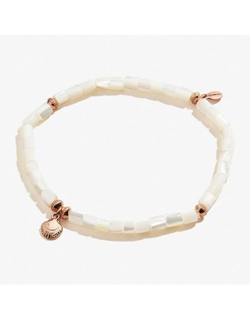 Scallop Shell Stretch Anklet, SR