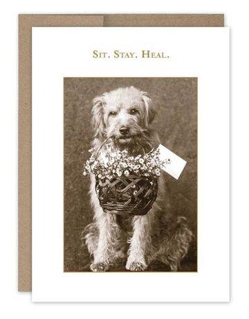 Shannon Martin Sit. Stay. Heal GW Card