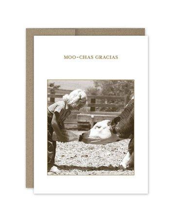Shannon Martin Moo Chas Gracia TY Card