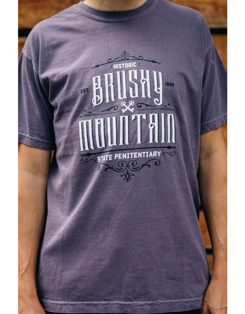 Comfort Colors tee Front Ornate - Tee / SS