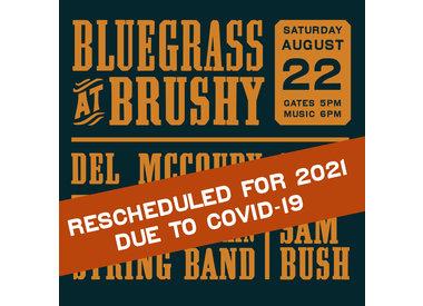 Bluegrass at Brushy