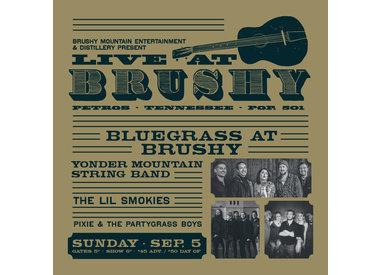 LIVE at Brushy: Bluegrass