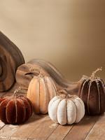 Bethany Lowe Designs Elegant Fall Velvet Pumpkin Tall Beige