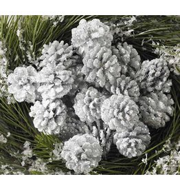 K & K Interiors Copy of Box / 24 White Glitter Pinecones