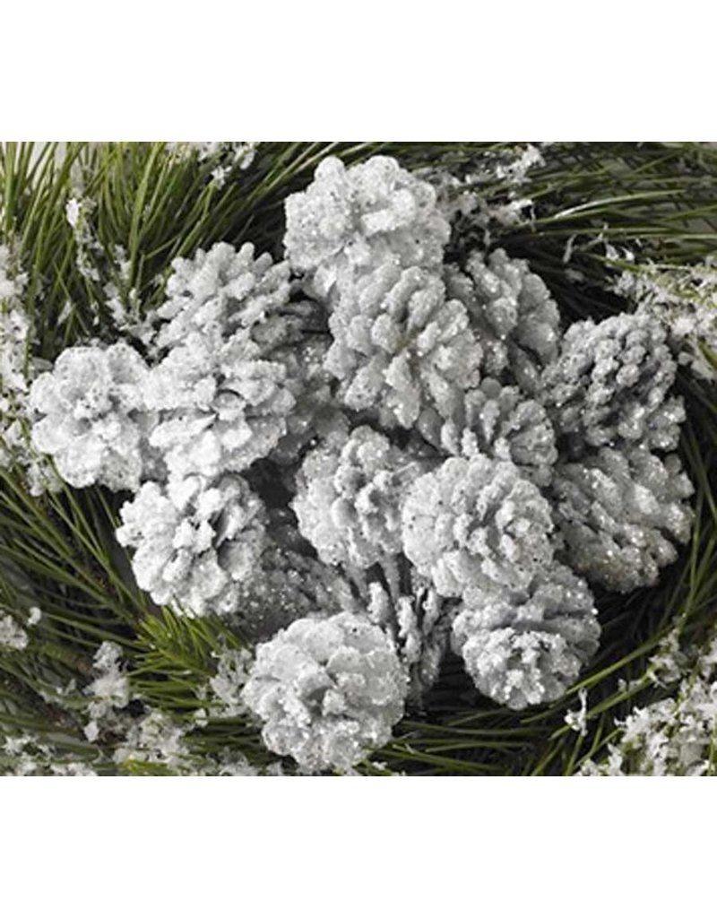 K & K Interiors Copy of Box / 24 White Glitter Pinecones