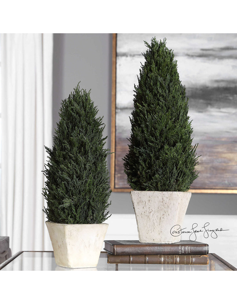 Uttermost / Revelation Cypress Cone Topiary in Aged Stoned Terracotta, Small