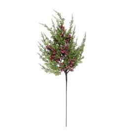 24 Inch Cypress Pine w Dark Red Iced Berry Stem