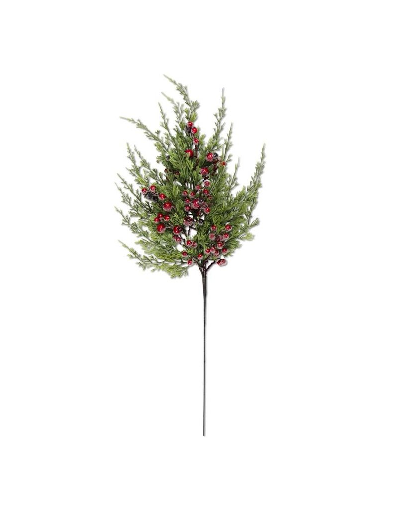 24 Inch Cypress Pine w Dark Red Iced Berry Stem