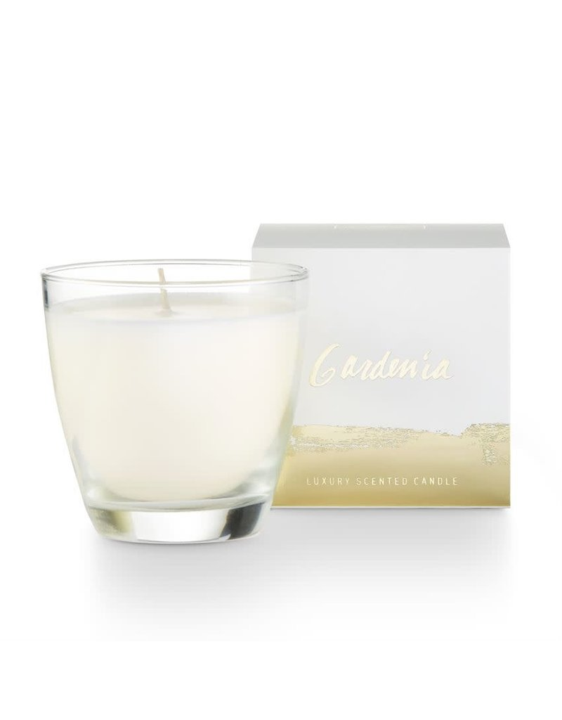 Illume Gardenia Demi Boxed Glass Candle
