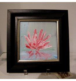 Scott Ellis 6 x 6 Pink Water Lilly
