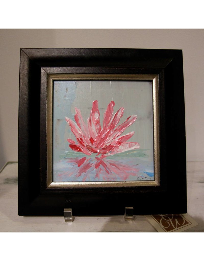 Scott Ellis 6 x 6 Pink Water Lilly