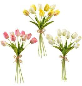 Tulip Bundle